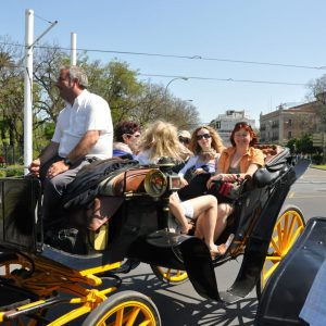 hassle free tour include carriage
